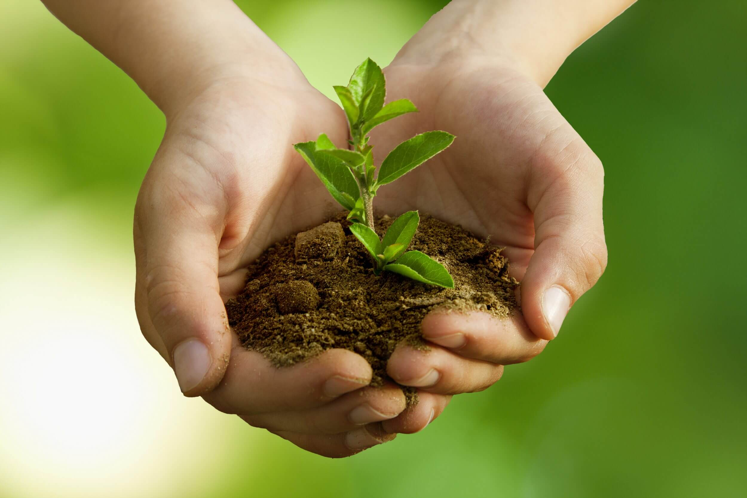 Plant A Difference Environmentally Friendly Fundraiser