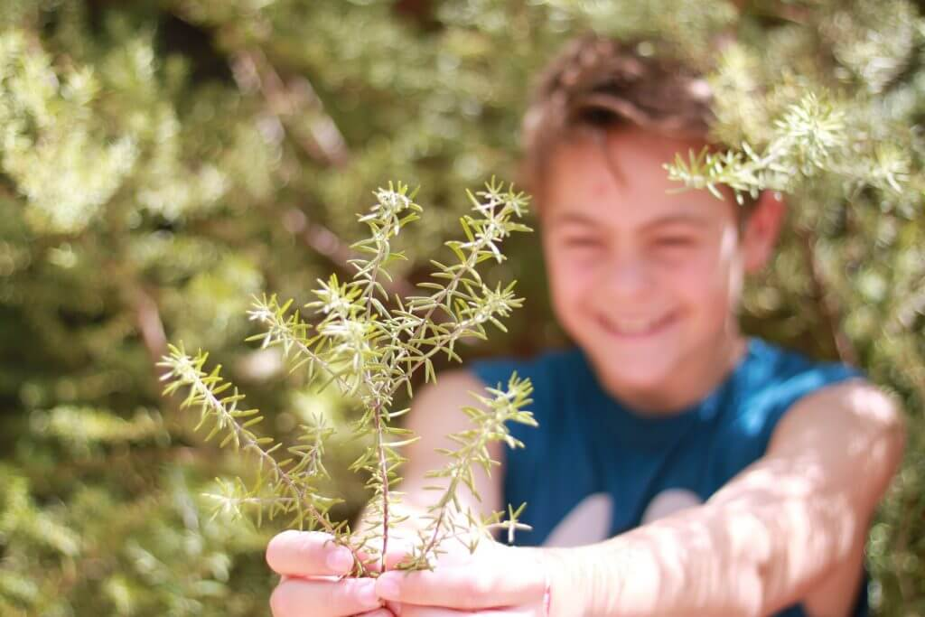Choose eco-friendly fundraising with Australian Fundraising.