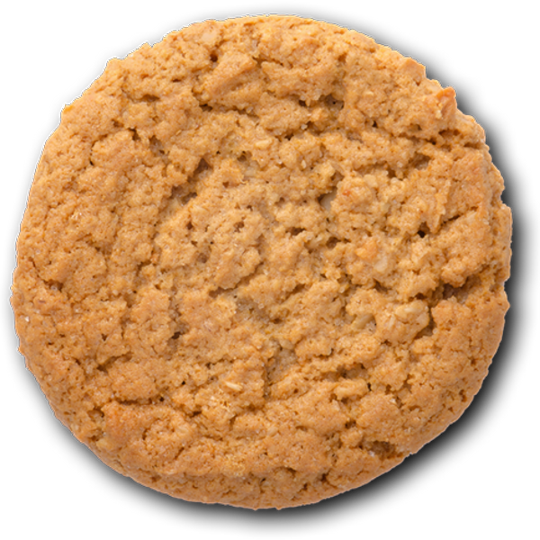 Anzac Biscuit image